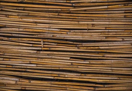 reed grass, texture, reeds, detail, horizontal, close-up, material, surface, retro, design