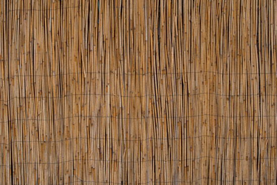 texture, reeds, surface, material, old, pattern, rough, abstract, design, retro