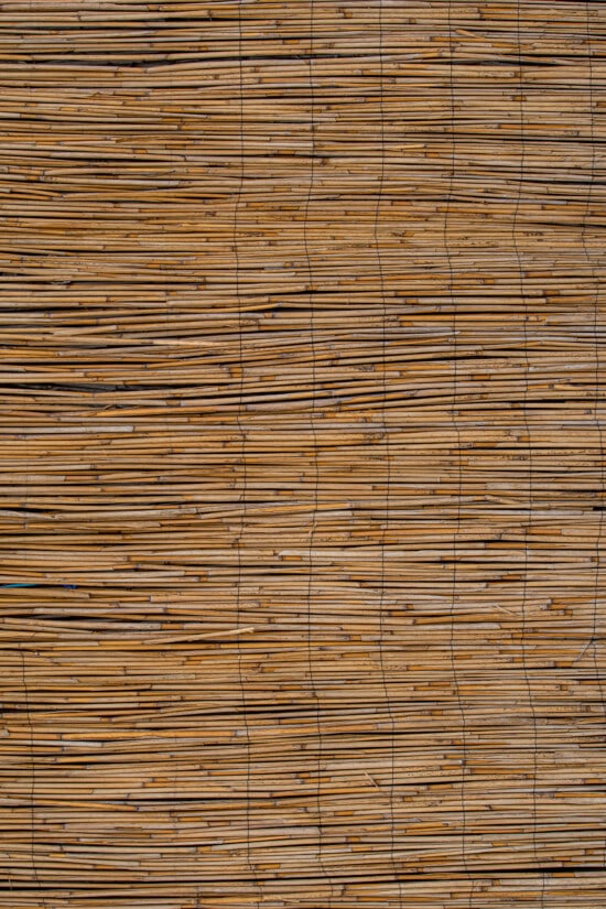 reeds, natural, material, insulation, horizontal, old, dry, texture, straw, bulrush, rough