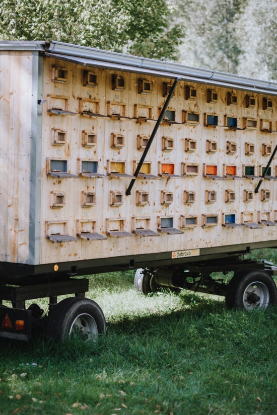 beehive, truck, trailer, boxes, vehicle, transport, cargo, wagon, industry, outdoors