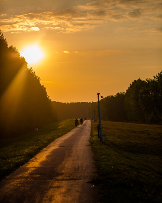 silhouette, sunspot, people, bicycling, backlight, sunlight, recreation, journey, road, dawn