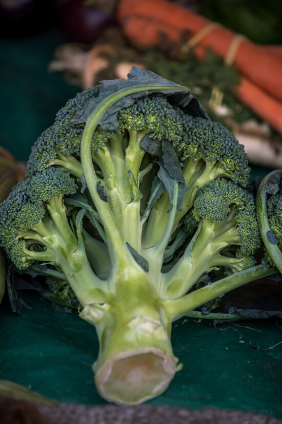 broccoli, organic, vegetable, close-up, antioxidant, market, agriculture, ingredients, nutrition, diet