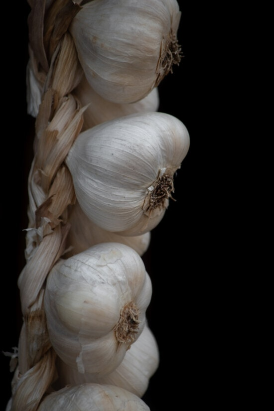 organic, garlic, close-up, hanging, spice, food, vegetable, ingredients, nutrition, root