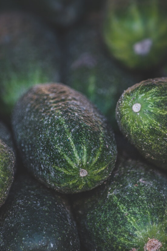 close-up, cucumber, dark green, organic, agriculture, products, food, vegetable, ingredients, nutrition