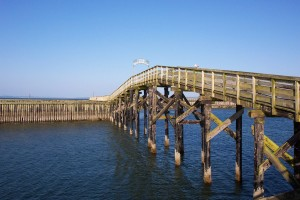 bridge, sea
