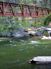 bridges, streams, river, leaves