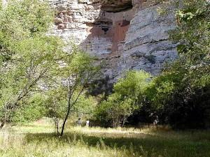 Монтезума, замък, скала, индийски, трева, дървета