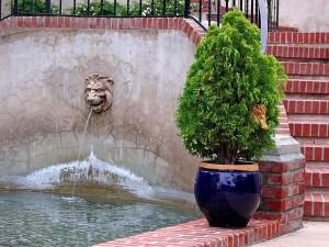 fountain, park