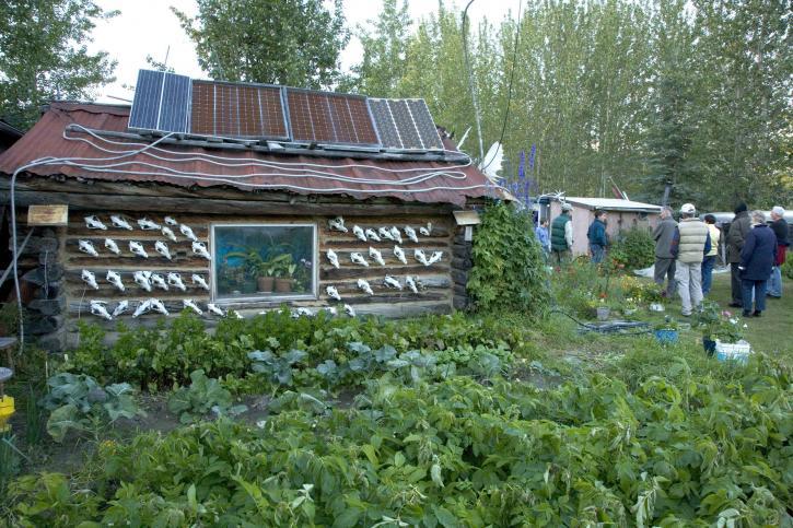 cabin, solar, panels