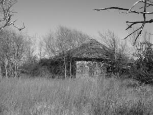 agriculteurs, abandonnés, maison, Palacios, Texas