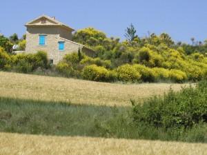 farmhouse, Provence, France