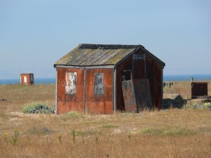 shack, dungeness