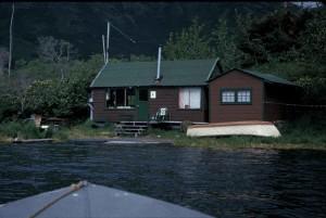 petit, bois, maison, lac