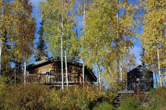 wooden, log, cabins