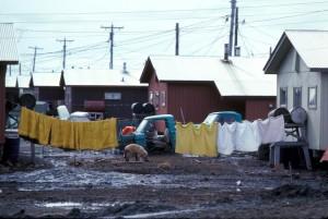 betel, hjem, Yukon, delta, tilflukt, office