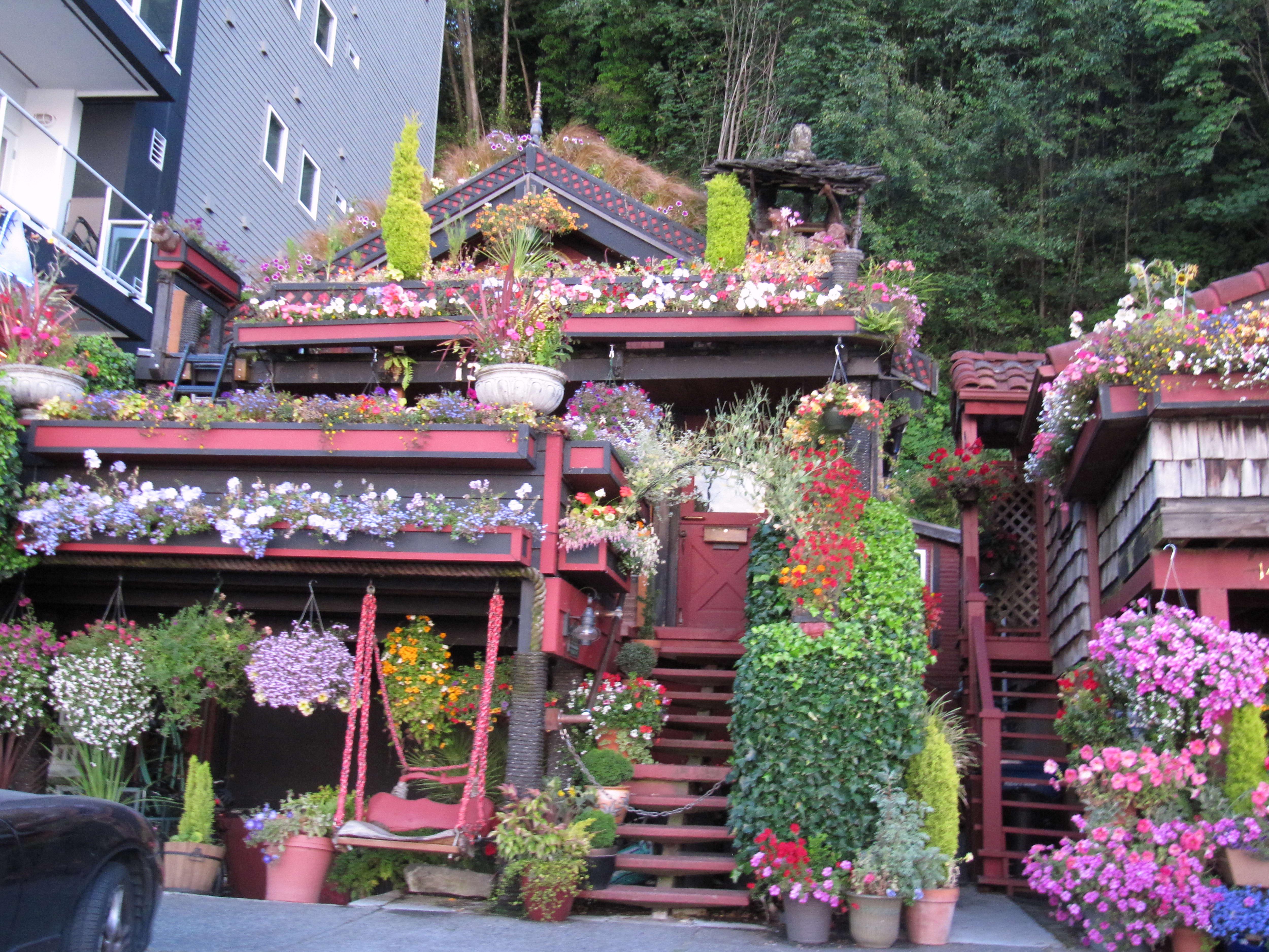 Free photograph; nice, flower, house