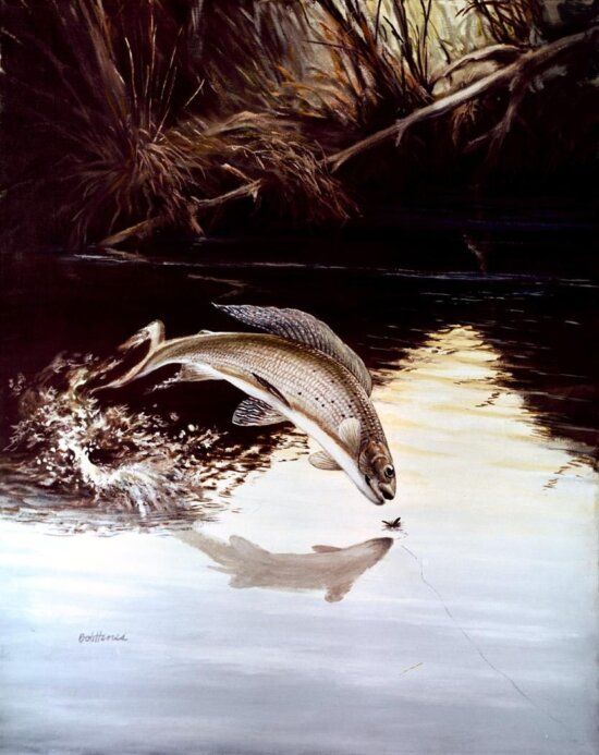 artwork, grayling, leaping, water