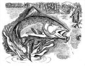 noir et blanc illustration, pêcheur, pêche, art, photo