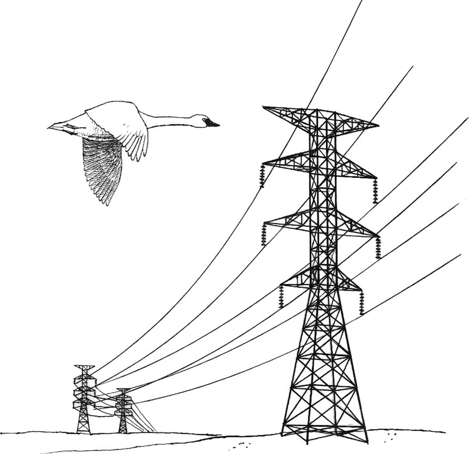 Line Art Download : Free picture power lines hazard illustration