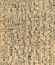 papyrus, curs, hiero