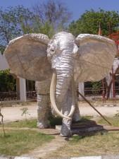 elephant, statue
