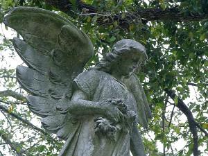 art, statuary, angel, statue