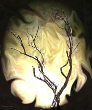 Bush, brann