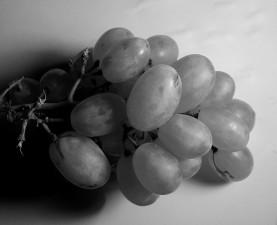 grayscale, photo