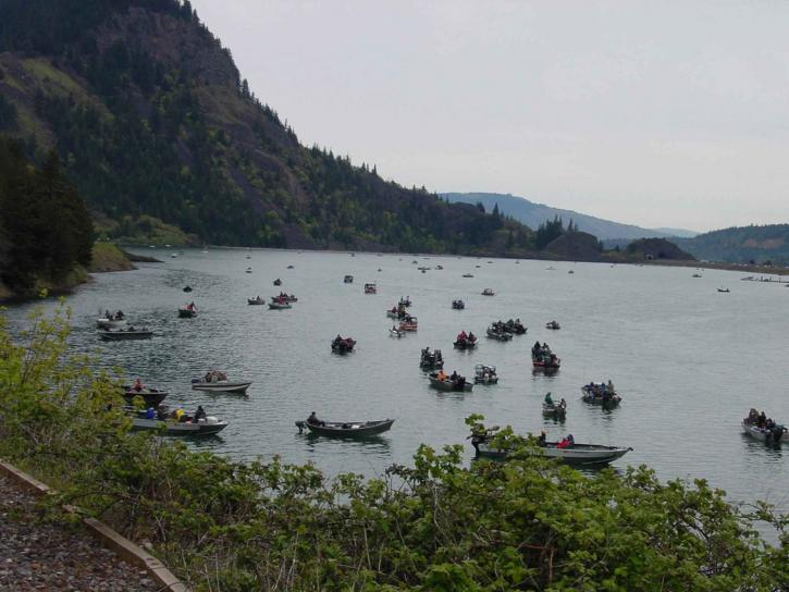 anglers, crowd, people, boats, water