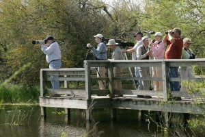 birdwatchers, stop, set, equipment, overlook