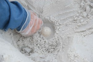 circles, egg, help, loosen, sand