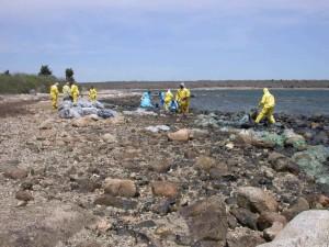 crew, workers, clean, beach, coast