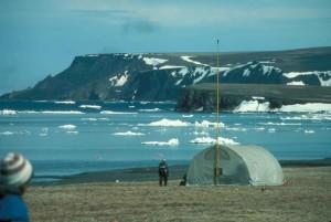 campo, campo, Alaska, invierno
