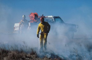 les pompiers, les combats, le feu, l'action