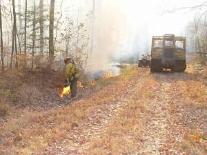 pompiers, lourd, machinerie, contrôlé, le feu