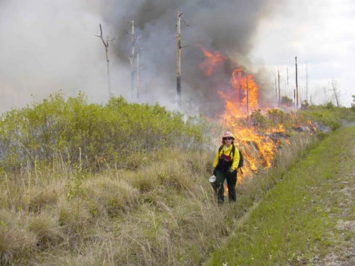 bombero, empleado, se inflama, prescrito, quemadura