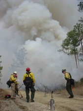 fire, training, prescribed, fire, training