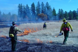 fire, prescribed, fire, expertise