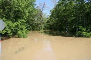 floods, woods