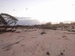 Insel, Tsunami