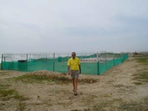 Kemps, Ridley, mare, tartaruga, kraals, Playa, Messico
