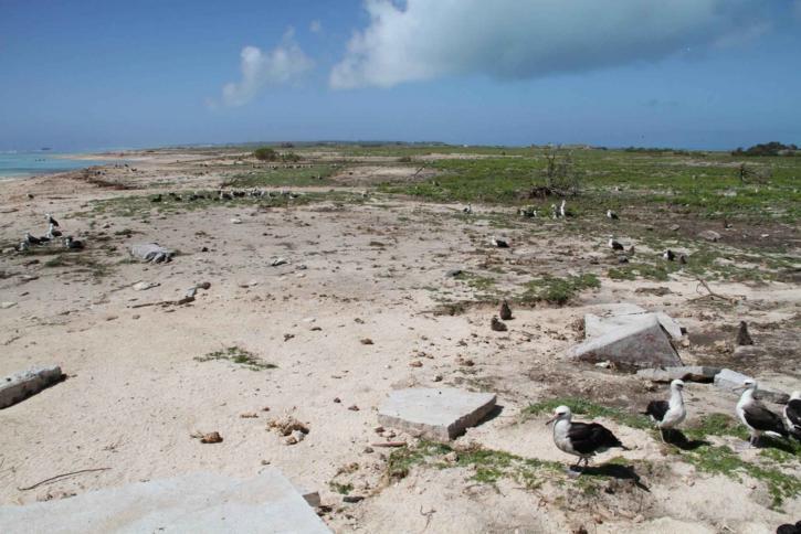 a part menti, madarak, hely, marad, épület