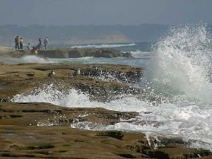 побережье, океан, волны, пляжи, чайки