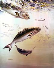 artistique, peinture, bluefish