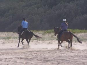 Hesteridning,