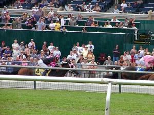 chevaux, course, pistes