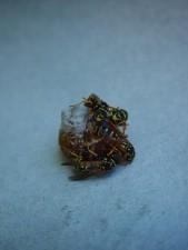 bundle, wasps, hatching, nest