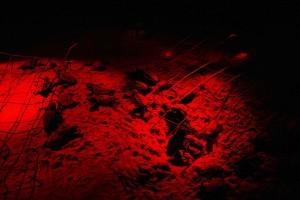 caouanne, tortues, océan, aide, rouge, lumière