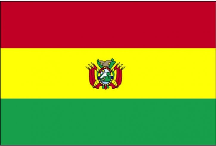 https://pixnio.com/free-images/flags-of-the-world/flag-of-bolivia-725x490.jpg