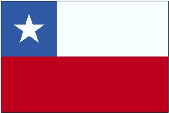 旗子, 智利